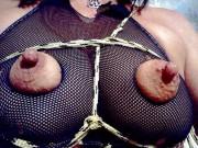 Free porn pics of Udder harnesses 1 of 102 pics